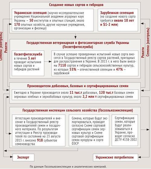 Разрешительная система, используемая в Украине при производстве семян