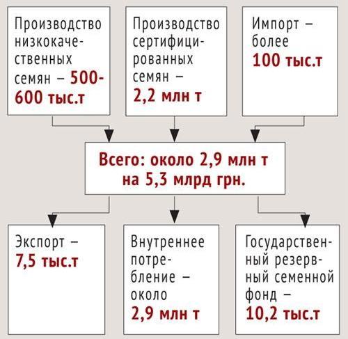 Рынок семян в Украине