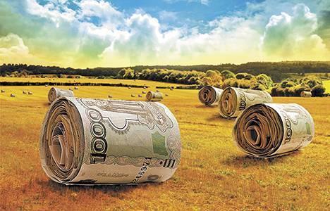 Капитальные инвестиции в сельское хозяйство Украины