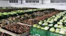 Холодильное оборудование для овощехранилищ