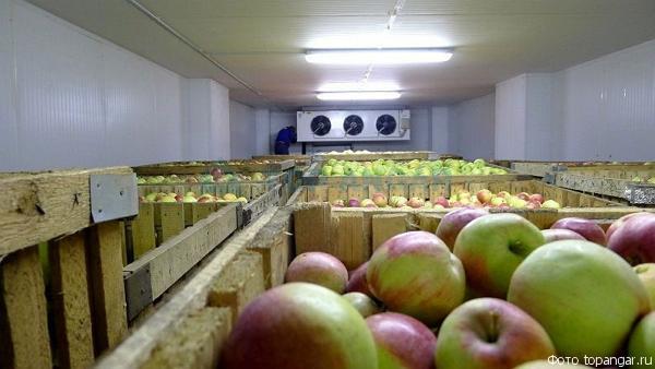 Холодильное оборудование для фруктохранилищ